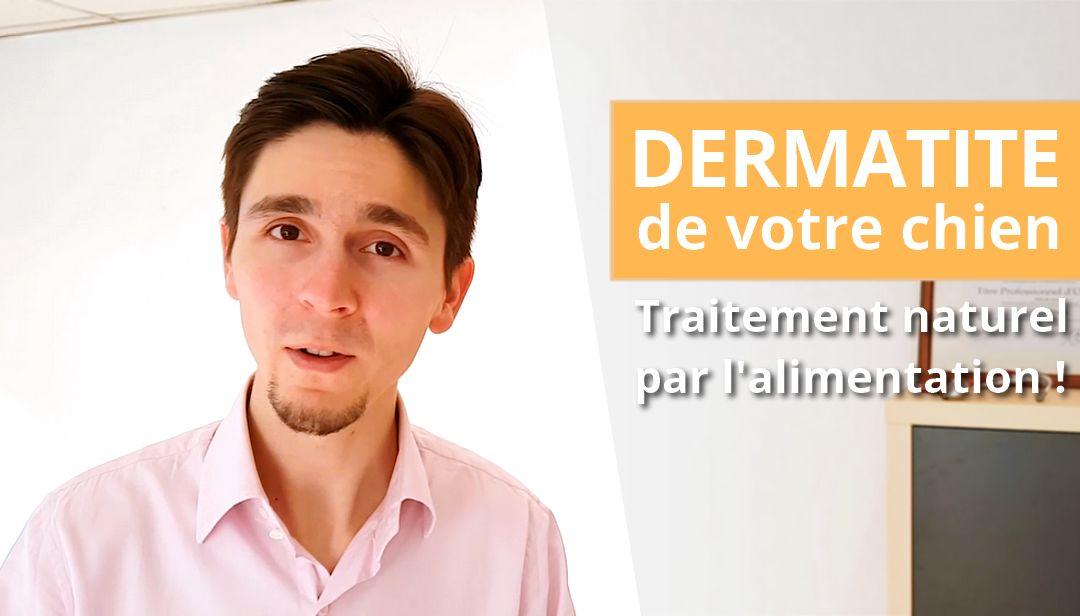 Dermatite atopique du chien et traitement naturel par l