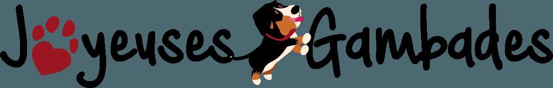 Santé du chien par une alimentation - Les Joyeuses Gambades