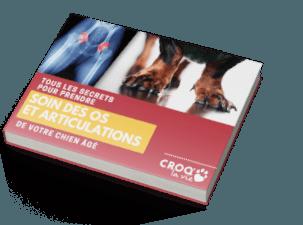 book-form-lp-os-et-articulation