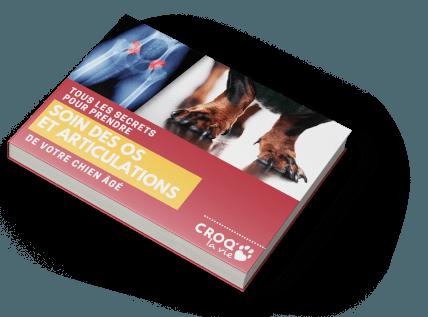 book-header-TP-os-et-articulation