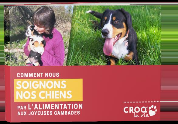 book-header-lp-soignons-chien-alimentation