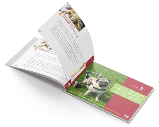 open-book-bg-lp-os-et-articulation-light