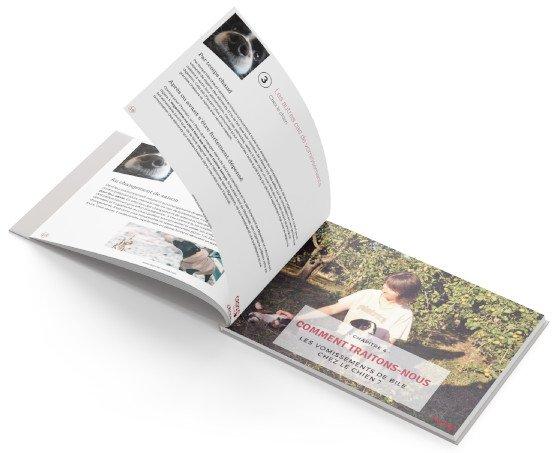 open-book-bg-lp-vomissement-light