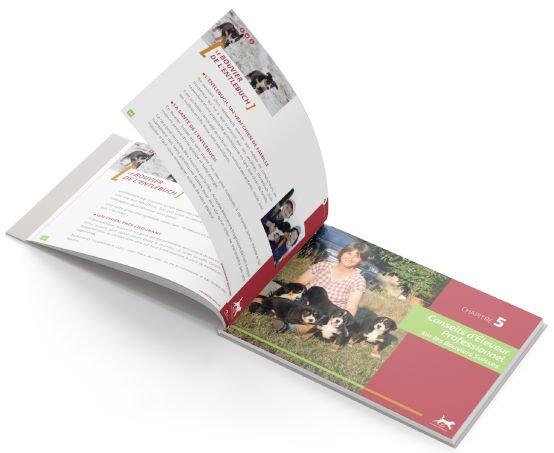open-book-lp-bg-bouvier-bernois-light