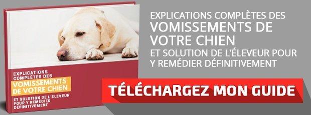 Télécharger le guide : Explications completes des vomissements de votre chien et solution